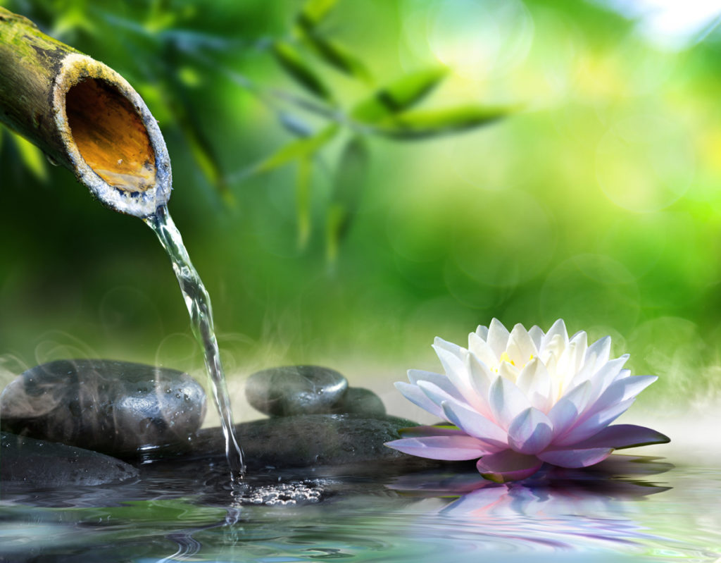 relaxing zen water fountain with flower